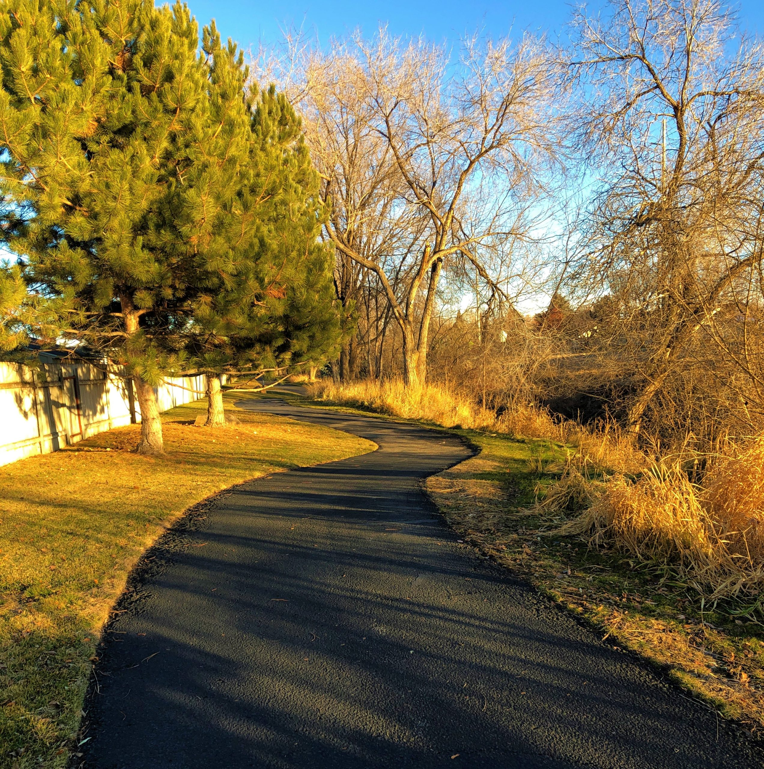 Best walks on the Greenbelt in Boise